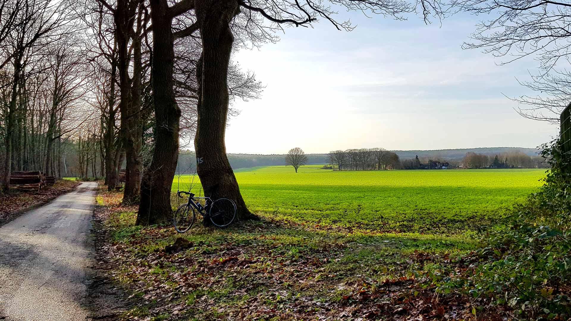 De velden rondom Nütterden en Donsbrüggen
