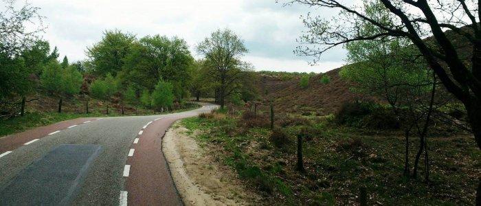 De Schietbergseweg op de Posbank bij Arnhem