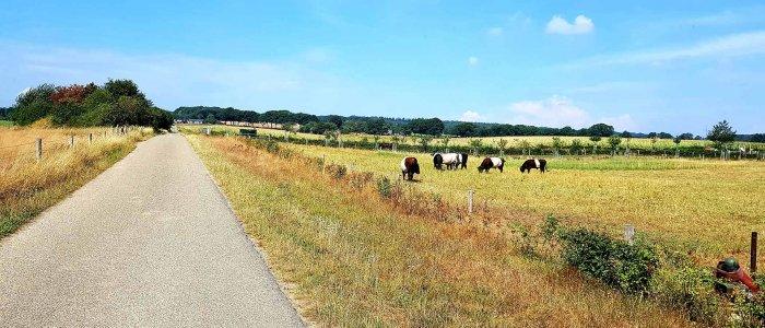 De Wylerbaan bij Groesbeek