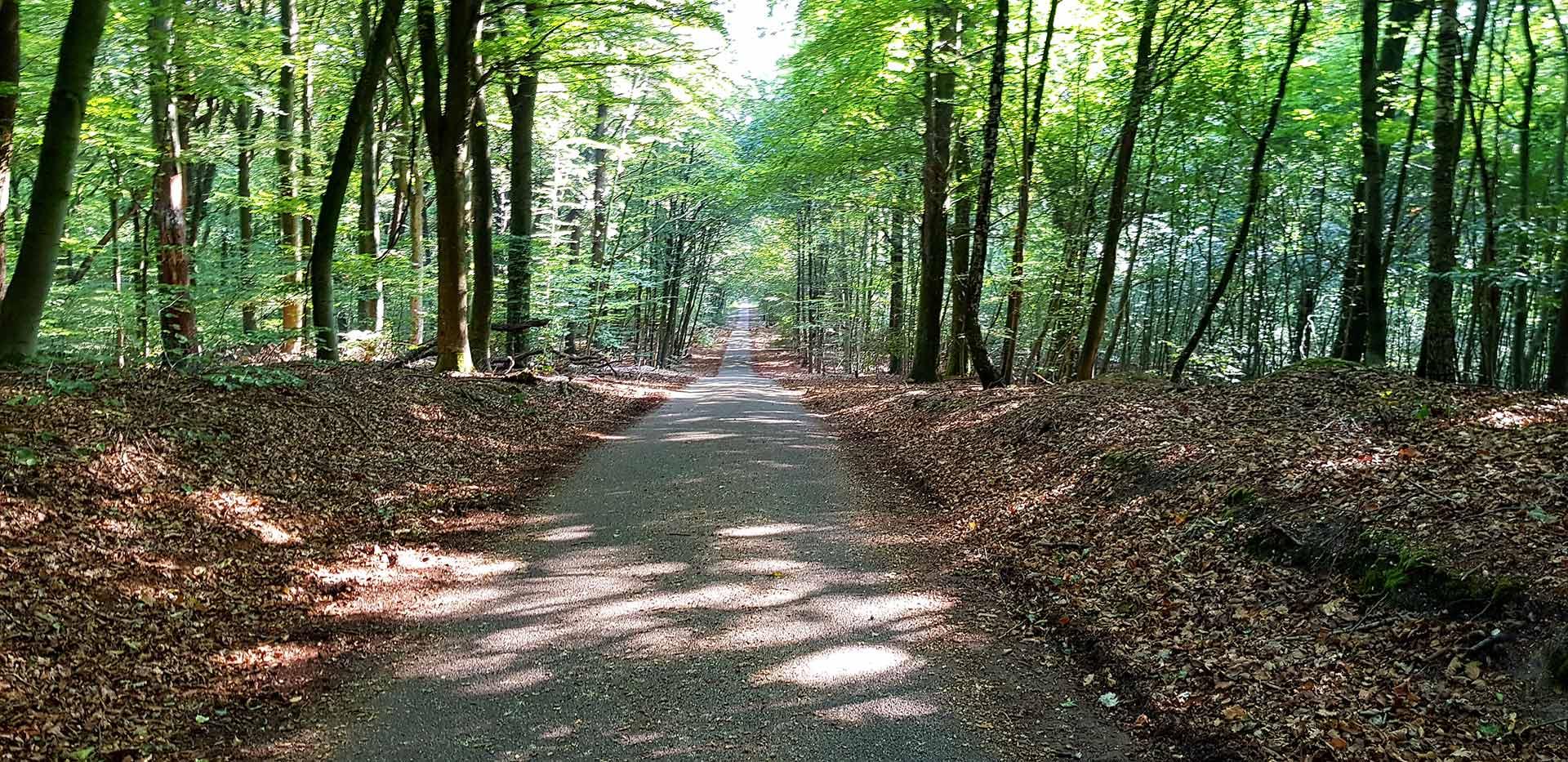 De Geldenberg bij Kleve in de buurt van Nijmegen